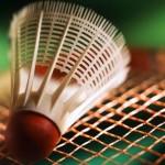 badminton_volante